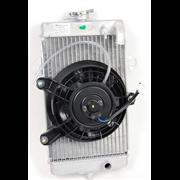 ORIGINELE RADIATOR MET VENTILATOR RAPTOR 700 (2009-2012)