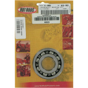 BEARING CRANK YFM350 (HOT RODS art.nr. K023)