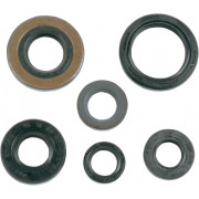 OIL SEAL KIT TRX400EX 99- | Fabrikantcode: 50-1046 | Fabrikant: K&S TECHNOLOGIES | Cataloguscode: 0935-0004