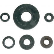OIL SEAL KIT TRX300 | Fabrikantcode: 50-1042 | Fabrikant: K&S TECHNOLOGIES | Cataloguscode: 50-1042