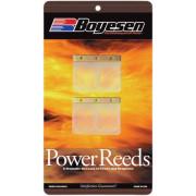 RACING REED-KAW/BLASTER| Artikelnr: 630R