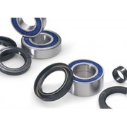 Wheel Bearing - Seal Kit - Rear Suzuki LT-F250 Ozark 02-12, LT-Z250 04-09
