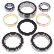 ALL BALLS | CHAINCASE BEARING & SEAL KIT ARCTIC-CAT |Artikelcode: 14-1013 |Cataloguscode: 1231-0327