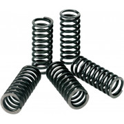 PRO CIRCUIT | CLUTCH SPRINGS | Artikelcode: CSY06450 | Cataloguscode: 1131-0611