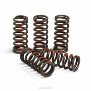 PRO CIRCUIT | CLUTCH SPRINGS | Artikelcode: CSY14250-CS | Cataloguscode: 1131-2480