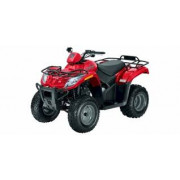 250cc 2x4 (1999-2009)